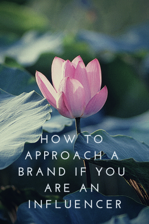 How to approach a brand if you are an Influencer