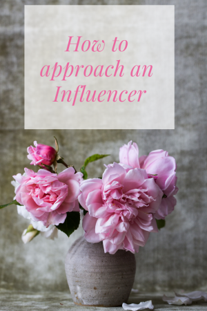How to approach an Influencer if you're a small brand